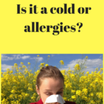 How to Tell the Difference Between a Cold and Allergies