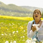 10 Myths about Allergies