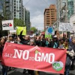 Why GMOS Are Contributing to Food Allergies and Food Sensitivities