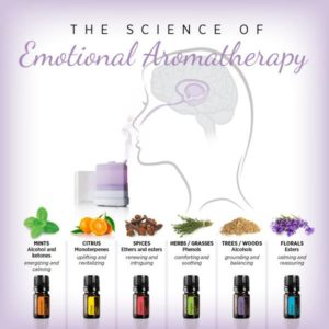 scienceofaromatherapy