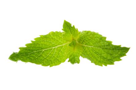 5 Benefits of Peppermint Tea