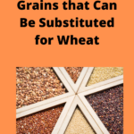 Gluten Free Recipes – What 7 Grains Can Be Substituted For Wheat?