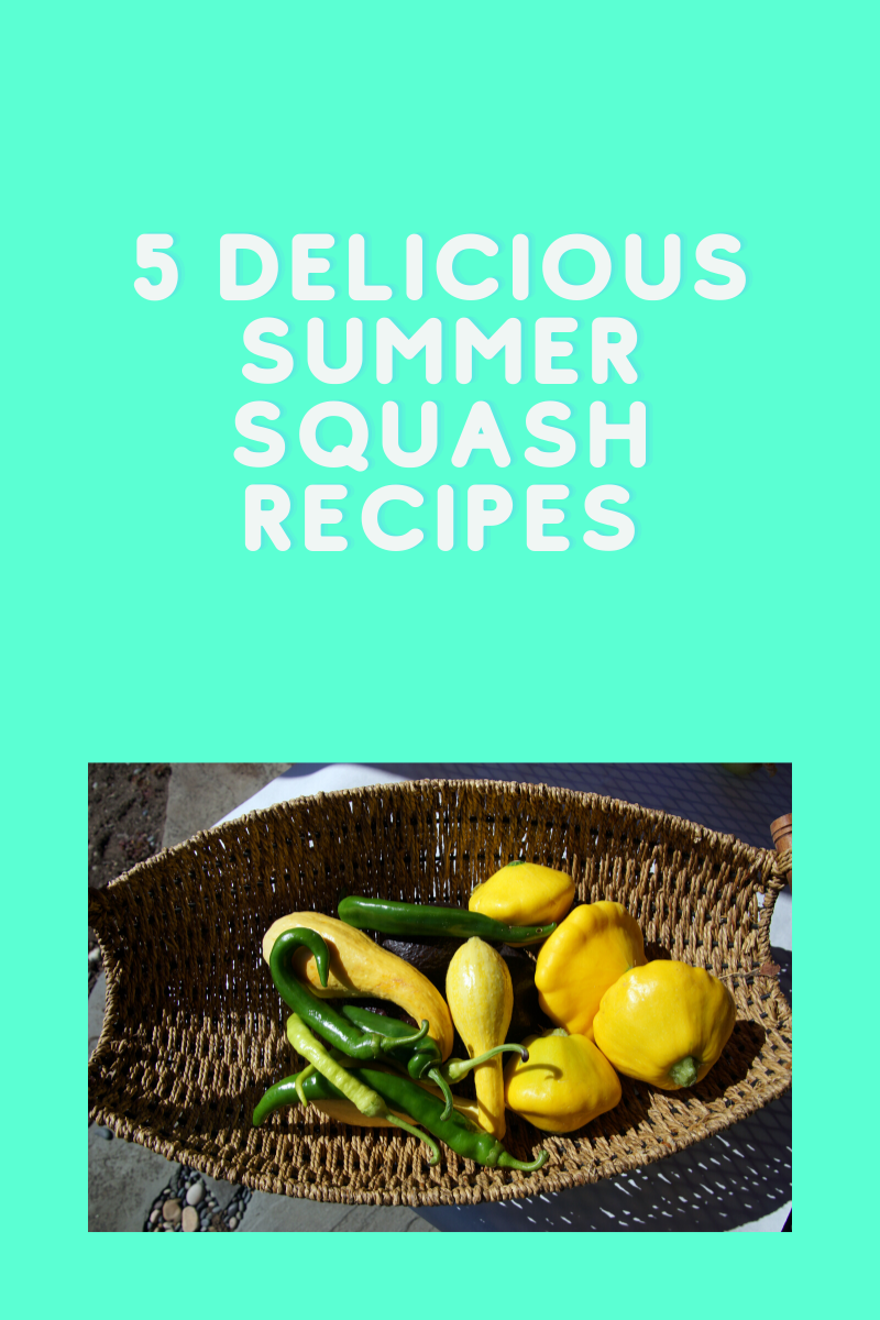 5 Delicious Summer Squash Recipes