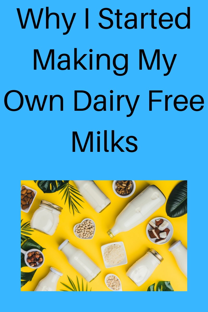 Why I Started Making My Own Dairy Free Milks